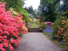 zo zie ik mijn tuin graag